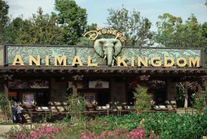 Disney's Animal Kingdom - Bay Lake, Florida