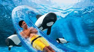 SeaWorld Orlando - Orange County, Florida