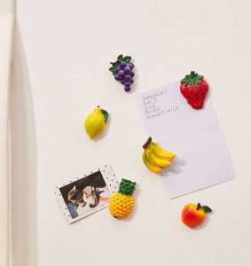 Fruit Magnets Set